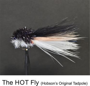 HOT Fly Original by Alan Hobson, Wild Fly Fishing in the Karoo