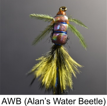 Alan's Water Beetle, AWB, Speciality Flies, Fishing Flies by Alan Hobson, Wild Fly Fishing in the Karoo