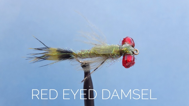 Red Eyed Damsel by Alan Hobson, Wild Fly Fishing in the Karoo