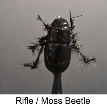 rifle beetle, moss beetle, speciality flies, Alan Hobson flies, Sterkies secrets, Fly fishing