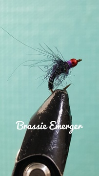 Black Brassie Emerger by Alan Hobson, Wild Fly Fishing in the Karoo