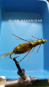 Olive Aeshnidae by Alan Hobson, Wild Fly Fishing in the Karoo