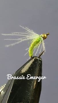 Chartreuse Brassie Emerger by Alan Hobson, Wild Fly Fishing in the Karoo