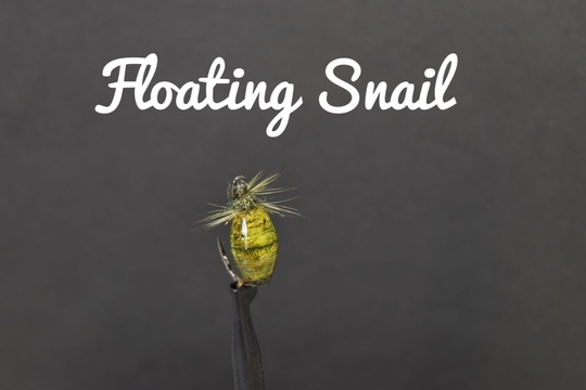 Floating Snail, by Alan Hobson of Wild fly fishing in the Karoo