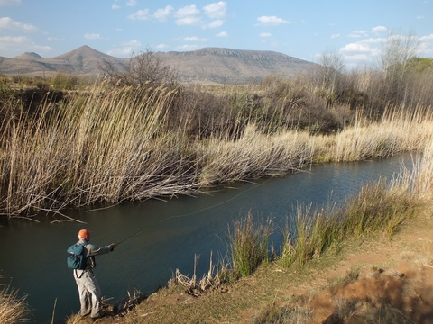 Fly Fishing for trout in rivers, Wild Fly Fishing in the Karoo, South Africa