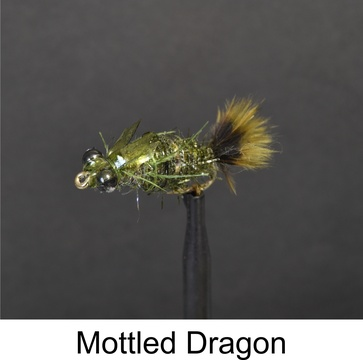 Mottled Dragon by Alan Hobson, Wild Fly Fishing in the Karoo