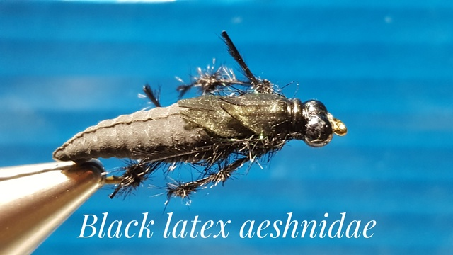 Black Latex Aeshnidae by Alan Hobson, Wild Fly Fishing in the Karoo