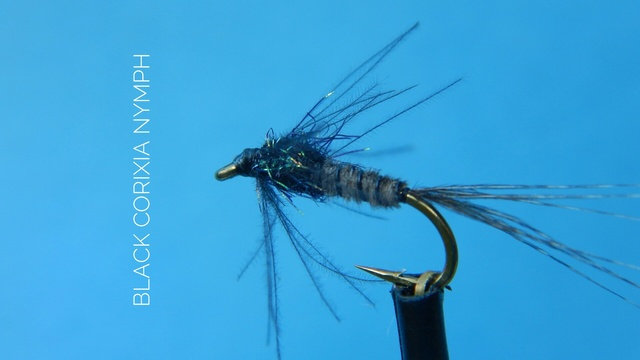 Black Corixia Nymph by Alan Hobson, Wild Fly Fishing in the Karoo