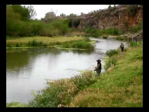 Fly Fishing in Somerset East, Despatch Online