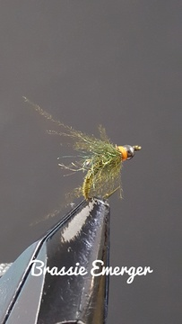 Olive Brassie Emerger by Alan Hobson, Wild Fly Fishing in the Karoo