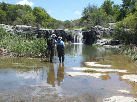 Wild fly fishing in the Karoo, fly fishing for trout