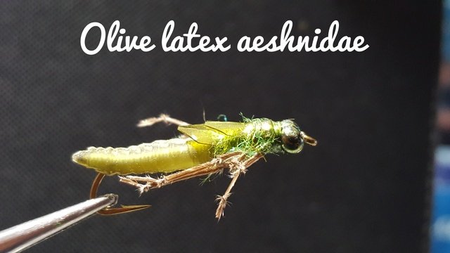 Olive Latex Dragonfly Nymph by Alan Hobson, Wild Fly Fishing in the Karoo