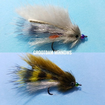 Grootdam minnow by Alan Hobson, Wild Fly Fishing in the Karoo